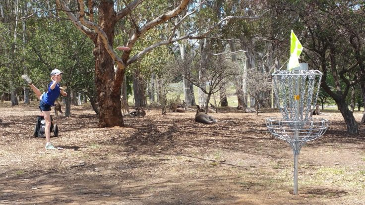The Kangaroo Galley at the 2018 Australian Disc Golf Championships
